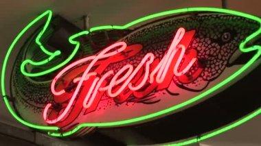 Neon Fresh Fish Sign — Stock Video