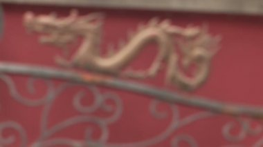 Dragon coming into focus — Stock Video