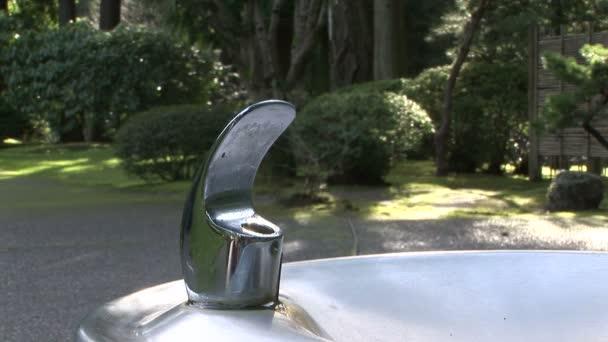 Agua que fluye de la fuente de agua potable — Vídeo de stock