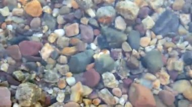 Colorful rocks underwater — Stock Video
