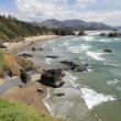 Cannon Beach — Stockvideo