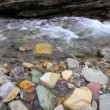 Stock Video: Creek