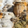 Mammoth Hot Springs — Stock Video