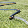 Stock Video: Garden Hose