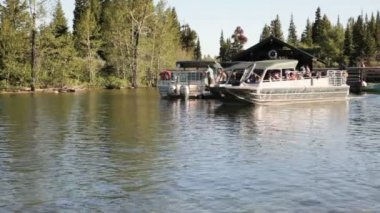 Tour Boats — Video Stock