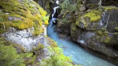 Avalanche Gorge, Time Lapse — Stock Video