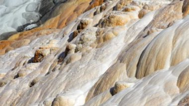 Zoom in of Palette Spring in the Mammoth Hot Springs area of Yellowstone National Park