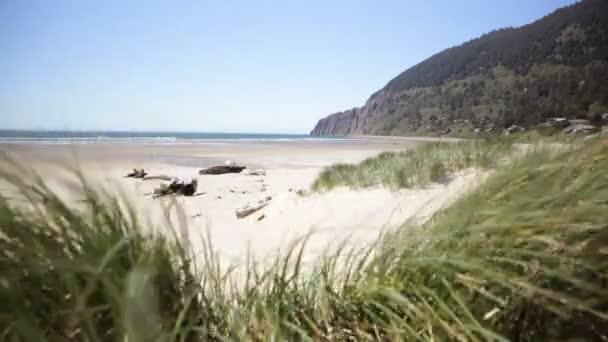 Costa de Oregon — Vídeo de stock