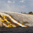 Overflow from Excelsior Geyser runs into the Yellowstone River — Stockfoto