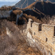 Great Wall of China — Stock Photo #39269659