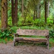 Empty Log Bench in the Forest — Stock Photo #42878265