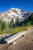 Bench and Mount Rainier — Stock Photo