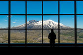 View of Mount St. Helens — Stock Photo