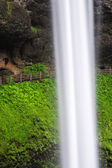 Hiking Trail behind a Waterfall — Stock Photo