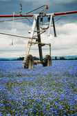 Agriculture Sprinkler — Stock Photo