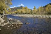 Rio da montanha do colorado cênico em queda — Foto Stock