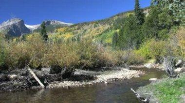 Colorado mountain river landschaftlich im herbst — Stockvideo