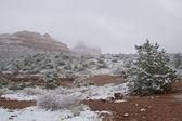 Roten Felsen Land Schnee — Stockfoto