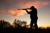Bird Hunter in Sunrise — Stock Photo