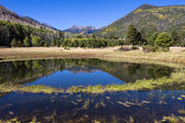 Lockett Meadow Flagstaff Arizona in Fall — Stock Photo