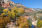 Slide Rock State Park Arizona in Fall — Stock Photo