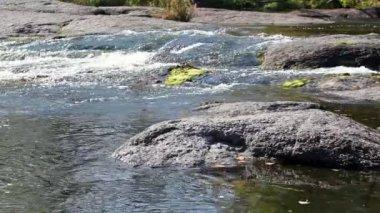 Sito del fiume con pietre e movimento dell'acqua con velocità differente — Video Stock