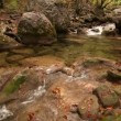 River, mountains, ravine, gorge, water, current, fast, foam, wood, trees , turn, yellow, autumn, earth, trunks, landscape, logs , fall, lie, cross, natural, boulders, stones — Stock Video #32447135