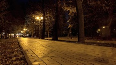 Mystical figures in night парке.HDR Time lapse — Stock Video