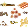 Collection of Spices - Stock Vector