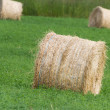 Hay Bale — Stock Photo #13795416