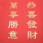 Chinese New Year Banner — Stock Photo #13799949