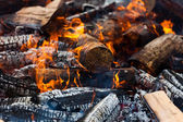 Burning Log — Stock Photo