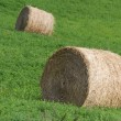 Hay Bale — Stock Photo #22025271