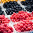 Berry Fruit — Stock Photo #22027703