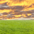 Green field and fire cloud - Stock Photo