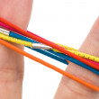 Color rubber band — Stock Photo