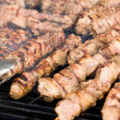 Kebabs on the grill — Stock Photo #22199029