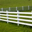 White Fence — Stock Photo #26149941