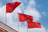 Red Flag — Stock Photo