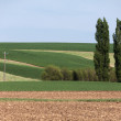 Foto de Stock  : Farm Land