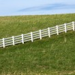 White Fence — Stock Photo #27408581