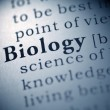 Biology — Stock Photo
