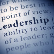 Leadership — Stockfoto #27409723