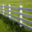 White Fence — Stock Photo #32557565