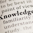 Knowledge — Stock Photo #33208175