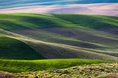 Rolling hill and Farm Land — Stock Photo