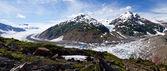 Salmon Glacier — Stock Photo