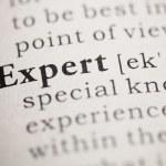 Expert — Stock Photo #33252485