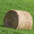 Hay Bale — Stock Photo #33379783