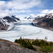 Salmon Glacier — Stock Photo #33382307